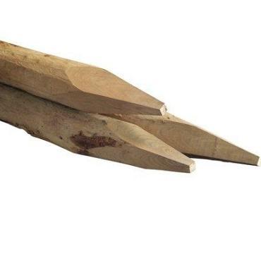 Weidepaal Kastanje 160x8/10 cm Gepunt