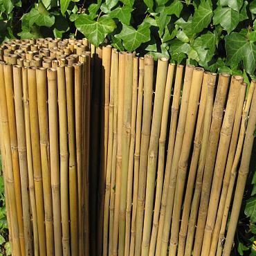 Bamboescherm Dalian 150x180 cm